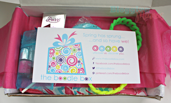 Subscription Box Review: The Boodle Box!